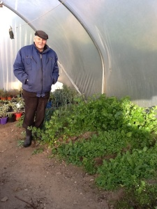 Noel McCabe in his green house