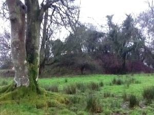 Barrow/mound with motte on Hill of Slane.