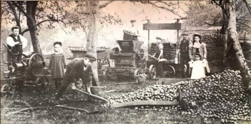 "Cider makers from Aylburton, England 1910. Photo from ""Old Photos Of the Forest of Dean"""