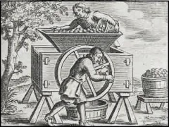 Medieval Cider Mill