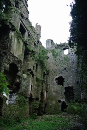 Purcell castle Loughmore Co. Tipperary