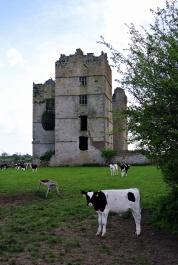 Purcell Castle. Co. Tipperary