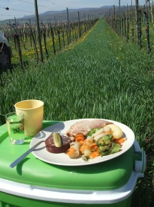 A simple yet delicious Alsatian lunch break from planting new starts in the vineyard.