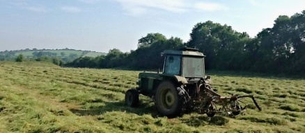 This week i tackled over 90 acres of shaking out hay for Razor before it was to be turned, raked and bailed....as well as strengthening my core muscles with my version of tractor pilates as I bump along the rough fields.