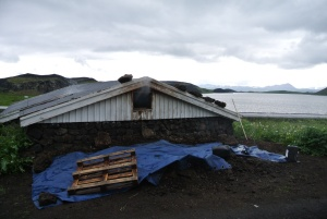 The smoking shed with fuel (dried sheep dung) tarped and waiting for the 12 hour mark. Picturesque Myvatn Lake in the background