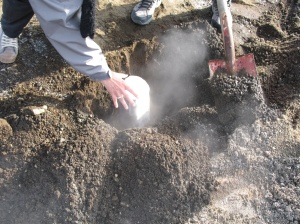 Geothermal baked bread ... Picture from icelandmag.com